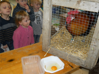 Ecole priv e le tulipier maternelle et primaire chabons is re ev nements 2010 2011 - Cage a poule synonyme ...